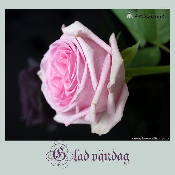 God vändag