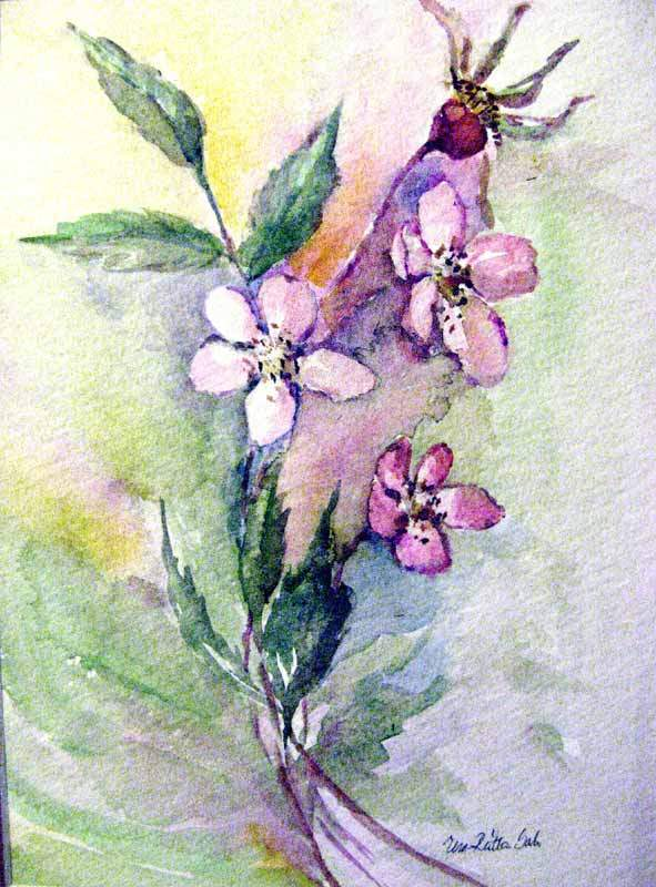 Valkeat pikkuruusun kukat,