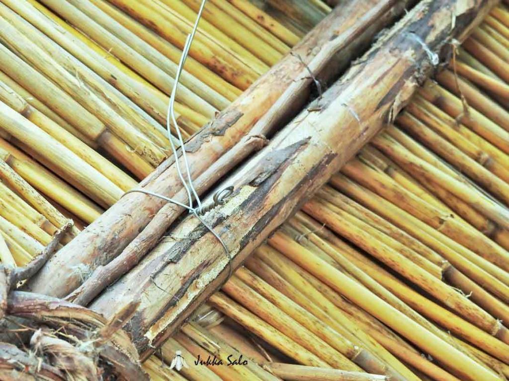 Teräslanka kiinnitetty puuriukujen ympäri