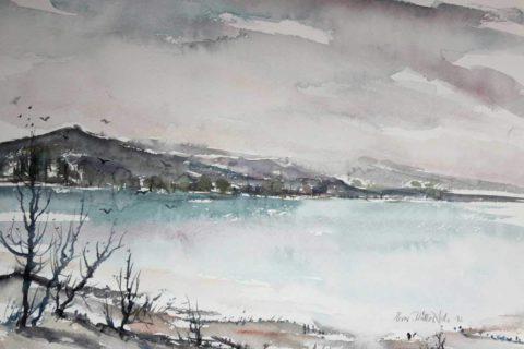 Eeva-Ritta Salo, akvarelle, Eräjärven linnut 53x72