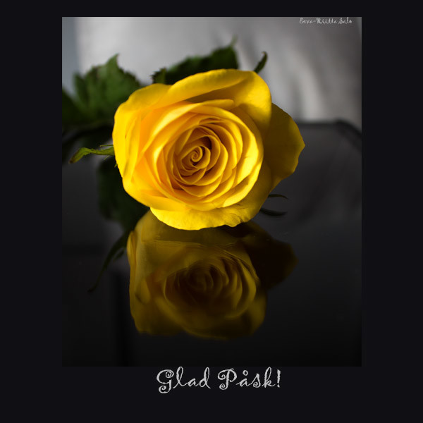 Ecard Image