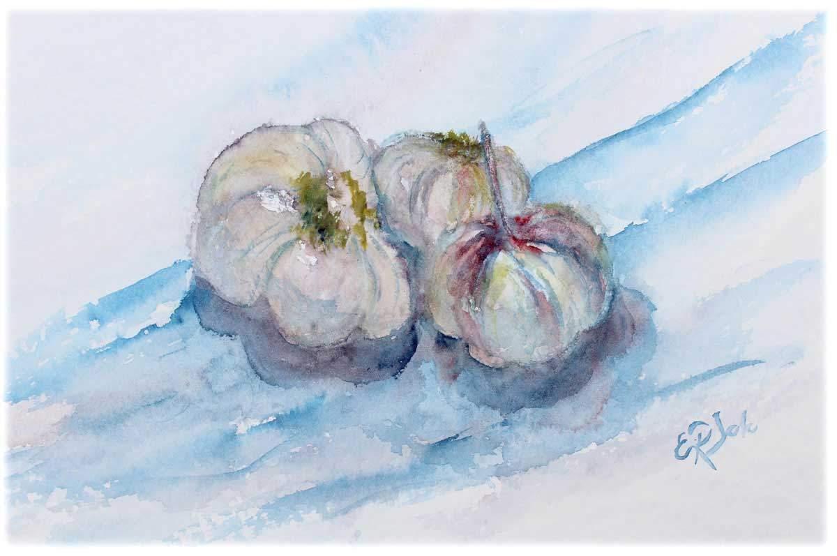 Akvarelli Valkosipulit 23x29, lähikuva-akvarellit, Eeva-Riitta Salo
